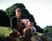 James Cromwell in Babe Poster and Photo