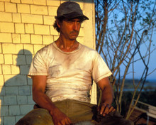 David Strathairn in Dolores Claiborne Poster and Photo