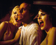 Peter MacNicol in Dracula : Dead and Loving It Poster and Photo