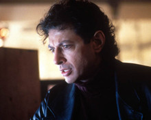 Jeff Goldblum in Hideaway Poster and Photo