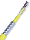 12 Fiber 8.3/125 Singlemode Armored Tight Buffer Indoor Plenum Premise Cable CP0129551901-AIAP
