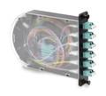 12 Fiber LC OM4 Multi-Mode Poli-MOD Patch and Splice Module (PM-L-12-PLC-4-S-01)