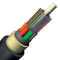 12 Fiber Singlemode Gel-Free Plenum Indoor/Outdoor Loose-Tube Cable (LQ0129318XB:C4B )