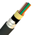 12 Fiber 50/125 OM4 Multimode Armored Tight Buffer Indoor/Outdoor Plenum Premise Cable (KQ012C611801-AIAP)