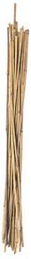 6pk 6' Bamboo Stake