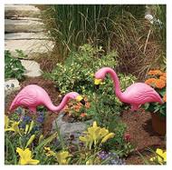 2pk Pnk Flamingo