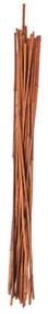 12pk 5' Bamboo Stake