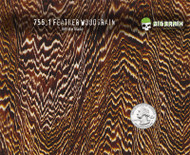Feathered Wood Woodgrain Hydrographics Pattern Big Brain Graphics White Base Quarter Reference