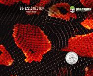 Boa SnakeSkin Red - 322.5 (50 CM)