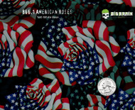 American Roses Flags Pride USA Proud to be an American Beautiful Flower Buy Dip Film Patterns Here Hydrographics Supplier USA Big Brain Graphics Nanochem Yeti White Base Quarter Reference