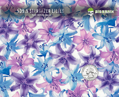 Stargazer Water Lily Lillies Lilies Flowers Woman Lady Feminine Flower Hydrographics Dip Film Dipping Pattern Big Brain Graphics Nanochem Yeti White Paint Base Coatings Prime Coatings Quarter Reference