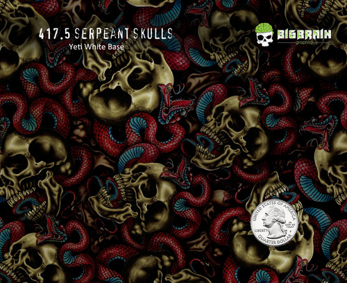 Serpeant Skulls Intertwined Snakes Snake Hydrographics Film Patterns Dip Nanochem Paint Yeti White Basecoat Quarter Reference