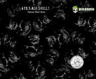 Ash Ashen Skulls Fire Skull Popular Hydrographics Dip Pattern Big Brain Graphics Coatings Paint Galaxy Metallic Silver Quarter Reference Trusted USA Seller