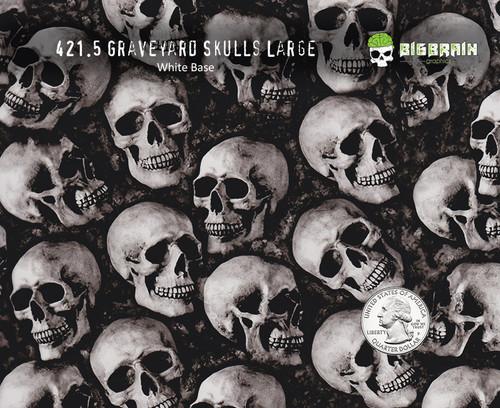 Graveyard Steam Skulls Hydrographics Film Skull Dipping