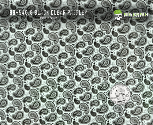 Black Clear Paisley Small Pattern Girl Women Hydrographics White Base Big Brain Graphics Quarter Reference