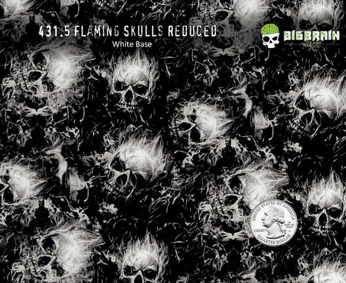 Flaming Skulls Flames Skulls Reduced Mini Tiny Small Sized Patterns Hydrographics Awesome Skull Pattern Seller Big Brain Graphics USA White Base Quarter Reference