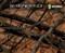 Deep Woods Fall 2 Camoflauge Hydrographics Film Pattern Big Brain Graphics Light Tan Base