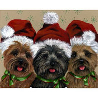 Cairn Terrier Greeting Cards Caesar & Company