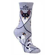 Rat Terrier  Socks