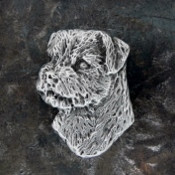 Border Terrier Head Pin