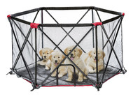 Carlson Portable Pet Yard Pen 6 Panel-Black with Red