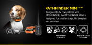 Pathfinder Mini GPS Track & Train Dog e-Collar System