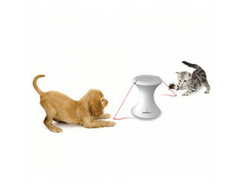 Automatic puppy kitten toy