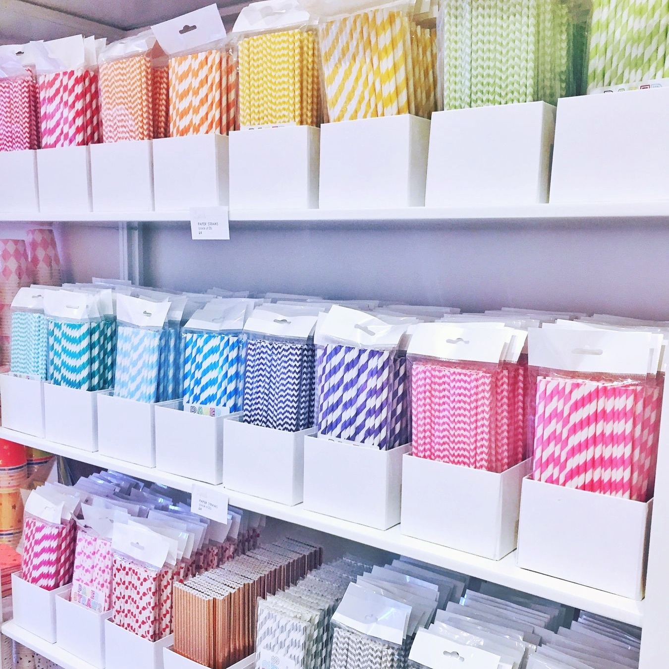 colourful-and-biodegradable-paper-straws.jpg