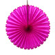 Tissue Paper Fan Decoration for Birthday Parties, Weddings, Baby Showers and Hen Dos