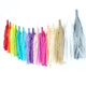 Custom rainbow tissue paper tassel garland party decoration for birthday parties, weddings and children's bedroom interior decor