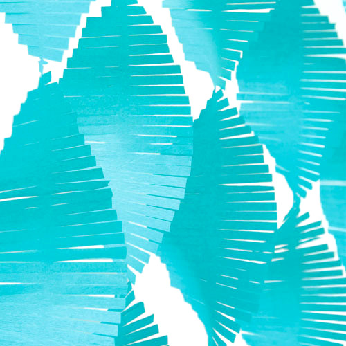 Teal Green Fringe Garland Streamer Party Decoration for kids birthday parties, weddings, photo booth backdrops and baby showers
