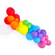 Rainbow Balloon Garland Decoration Kit to create your very own organic balloon garland arch for your party