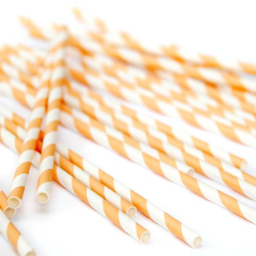 Orange Stripe Paper Party Straws