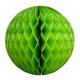 Green Tissue Paper Honeycomb Ball Pom Pom Decoration