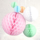 Pastel Tissue Paper Honeycomb Ball Pom Pom Decorations