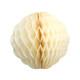Tissue Paper Honeycomb Pom Pom Decoration