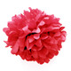 Red tissue paper pom pom decoration for birthday parties, weddings, hen dos and baby showers