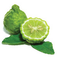 30% OFF - Bergamot Essential Oil - FOR DIFFUSING & CLEANING ONLY
