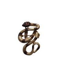 Brown Striped Snake Lapel Pin