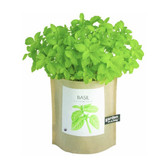 Organic Basil Garden-in-a-Bag