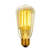 Edison Light Bulb 40 Watt (ST64-FL13)