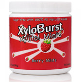 Xylitol Mints Berry Mints 6.35 oz (180 g) 300 Pieces, Xyloburst