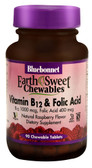 EarthSweet Chews Vitamin B12 Folic Acid Raspberry 90 Chews, Bluebonnet Nutrition