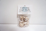 2 Inch Murex Sea Shells 1 oz. Bag