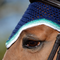 Upperville style shown in a navy base, with emerald, sea foam and snow trims, and two strands of matching beads.