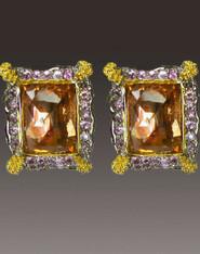 Amy Kahn Russell Faceted Cognac Quartz Ornate frame Clip/Post Earrings