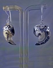 Indonesian Purple and White Nautilus Shell with Sterling Top and Wire