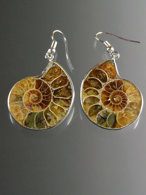 natural ammonite dangle earrings with sterling silver earwires