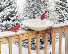 Heated Bird Bath (20 in.) w/Hardware