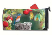 Orchard Bluebird Mailwrap